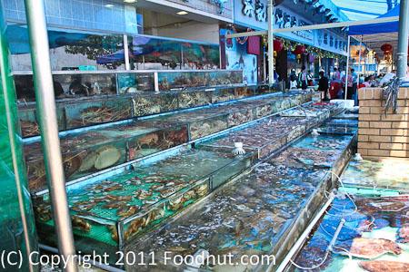 Hong Kong Seafood Restaurant Seattle